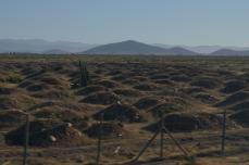 Von La Serena nach San Pedro de Atacama