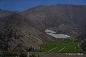 Auf dem Weg ins Valle de Elqui