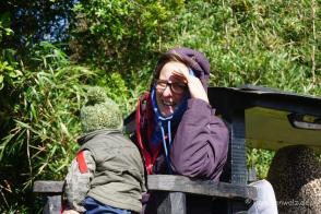 """Auf """"El Tren"""" in Los Senderos de Chepu, Chiloé"""