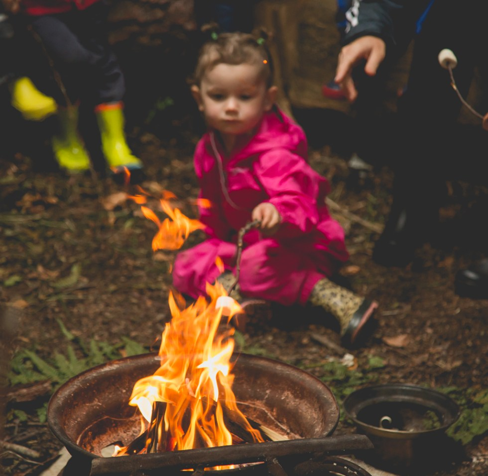 Forest Day – Marshmallows