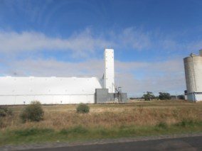 Grain Cilo on the road near Moree