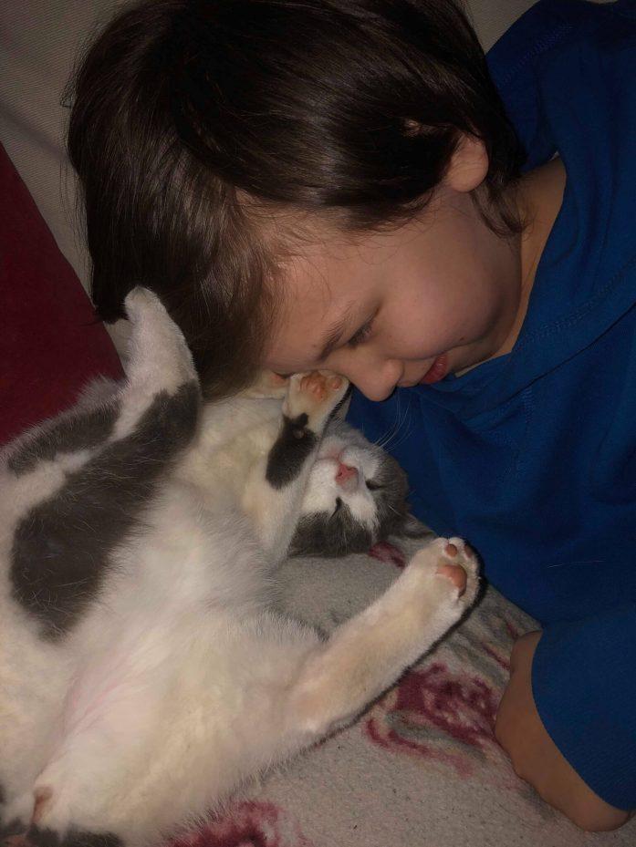 Billede af et barn der leger med en hvid kat.