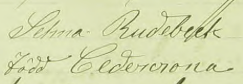 Selmas namnteckning när Fredric dött 1889.