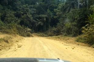 Huvudvägen Nigeria-Kamerun2