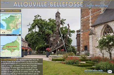 Allouville-Bellefosse (Seine Maritime)