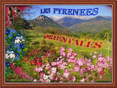 Les Pyrénées Orientales