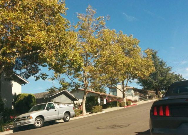 Pleasanton street