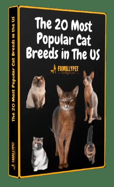 Book pdf cat breeds