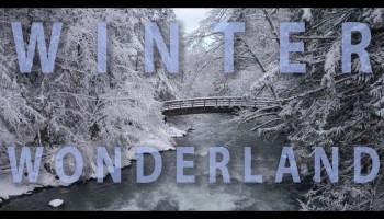 Song lyrics to Winter Wonderland