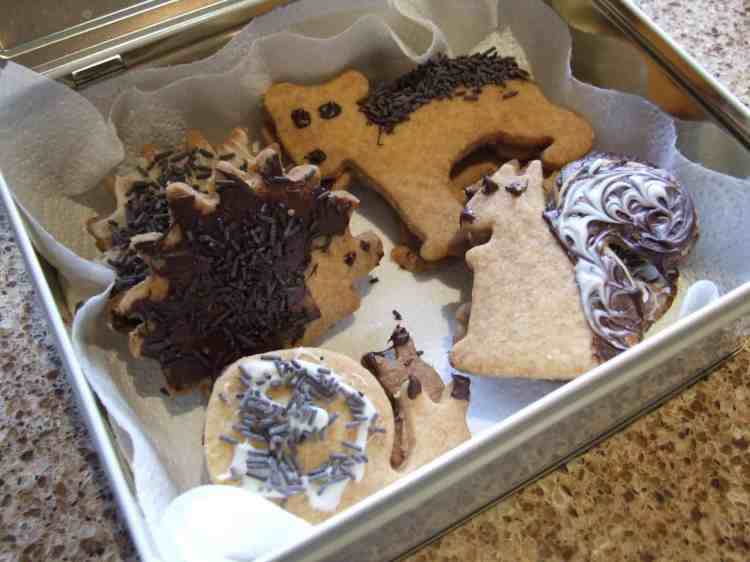 chocolate animal shortbread biscuits