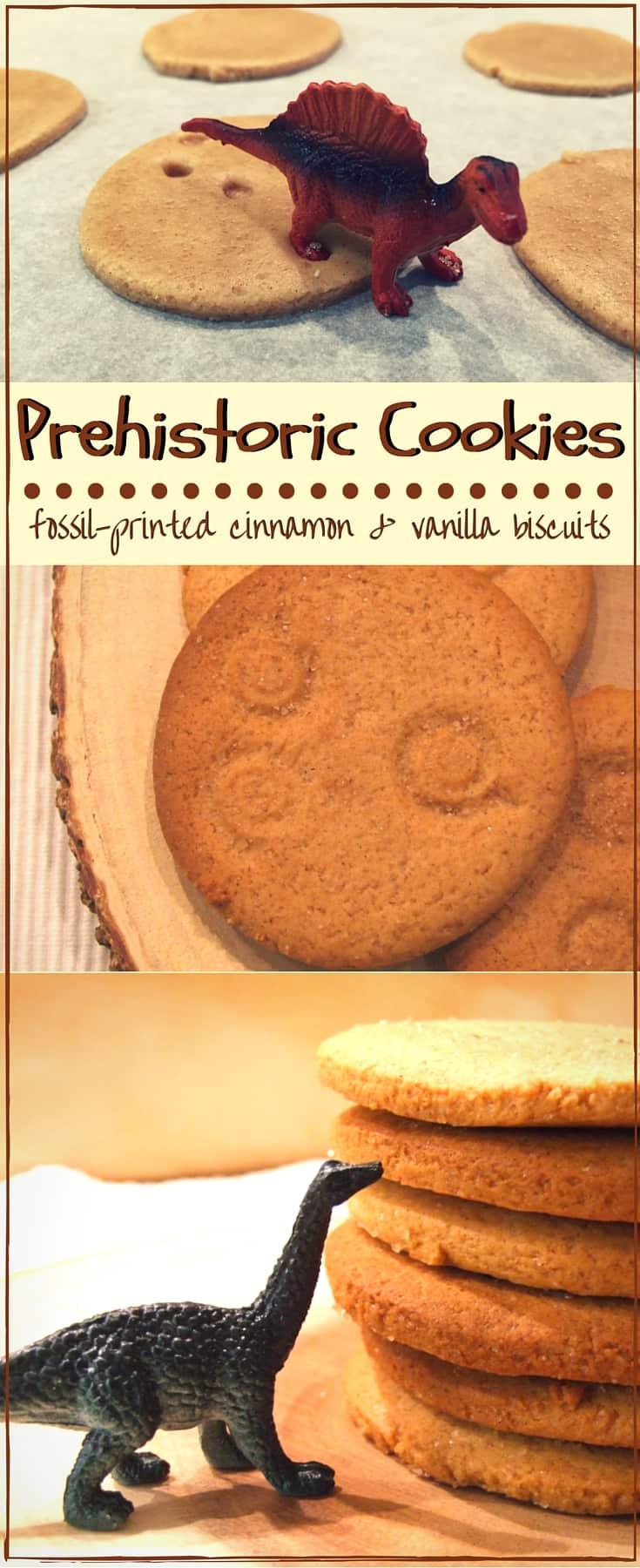 fossil-printed cinnamon & vanilla cookies