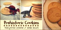 prehistoric cookies - vanilla & cinnamon cookies imprinted with fossils