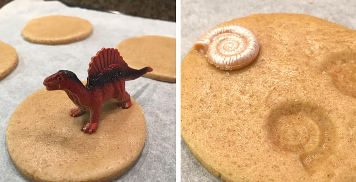 cookies imprinted with toy dinosaur footprints and ammonites