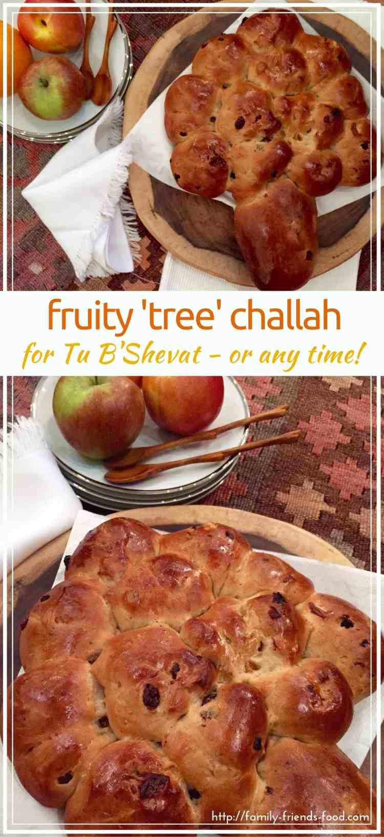 Fluffy, soft, delicious fruity challah, studded with apricot, apple, cherry, orange peel & more! Make tree shaped for Tu B'Shevat or enjoy a loaf anytime.
