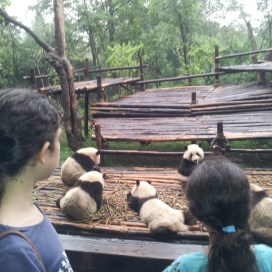 china with kids, family travel china