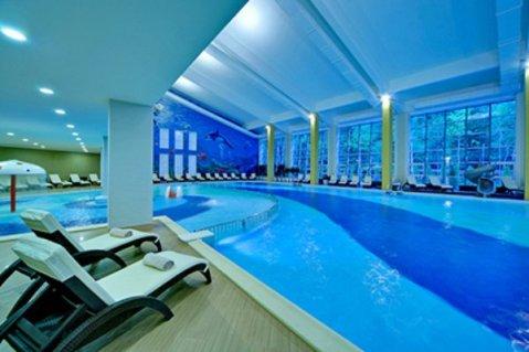 Отель лес Арт Ресорт, бассейн