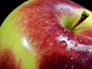 A Dozen Ways to Preserve Apples