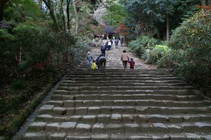 室生寺金堂下階段