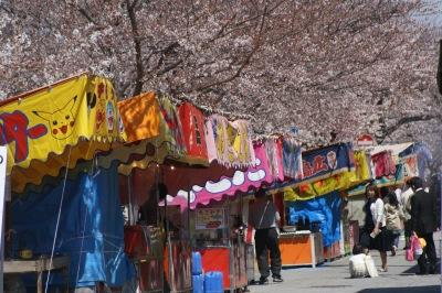 大江川の桜祭り