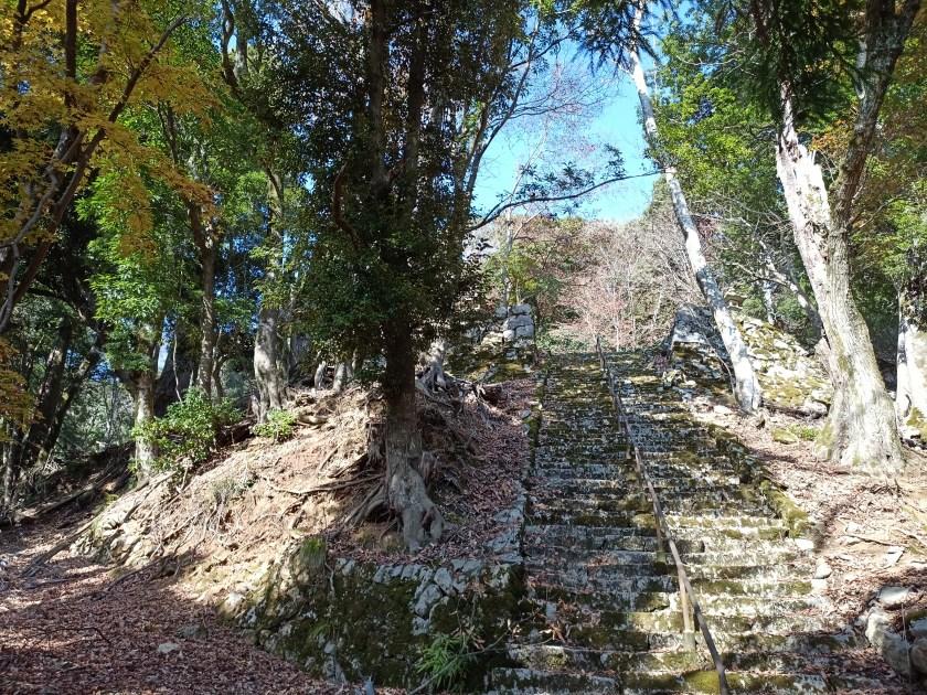 松尾寺遺跡の石段