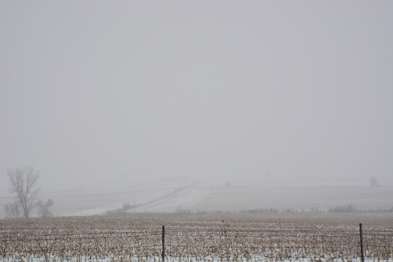 farm field in snow