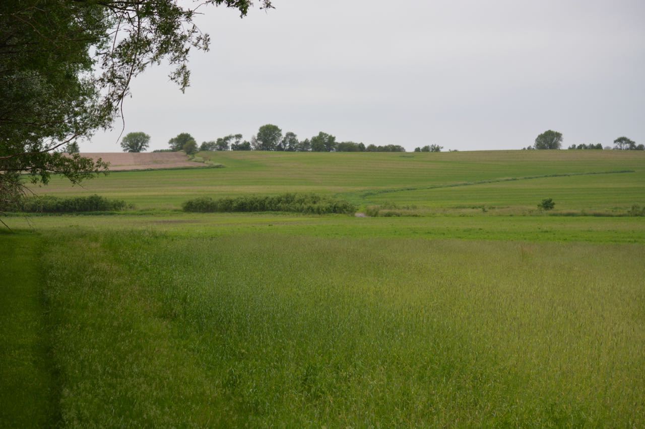 photo of farm field