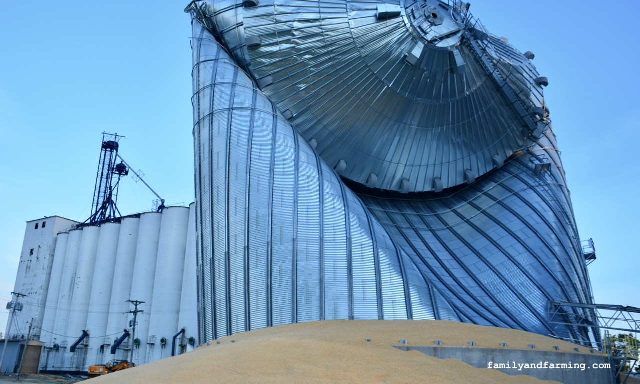 Collapsed Grain Bin from 2020 Derecho in Iowa