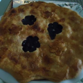 Carl's Favorite Blueberry Pie
