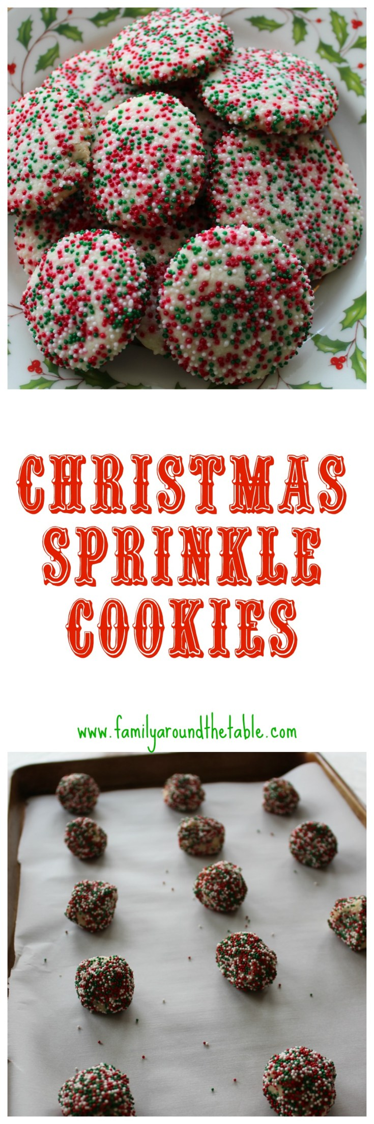 Want to make Santa happy? Leave a plate of Sprinkle Christmas Cookies.