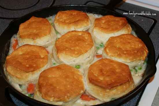 Turkey Biscuit Stew is easily made with leftovers or a rotisserie chicken. Delicious comfort food.