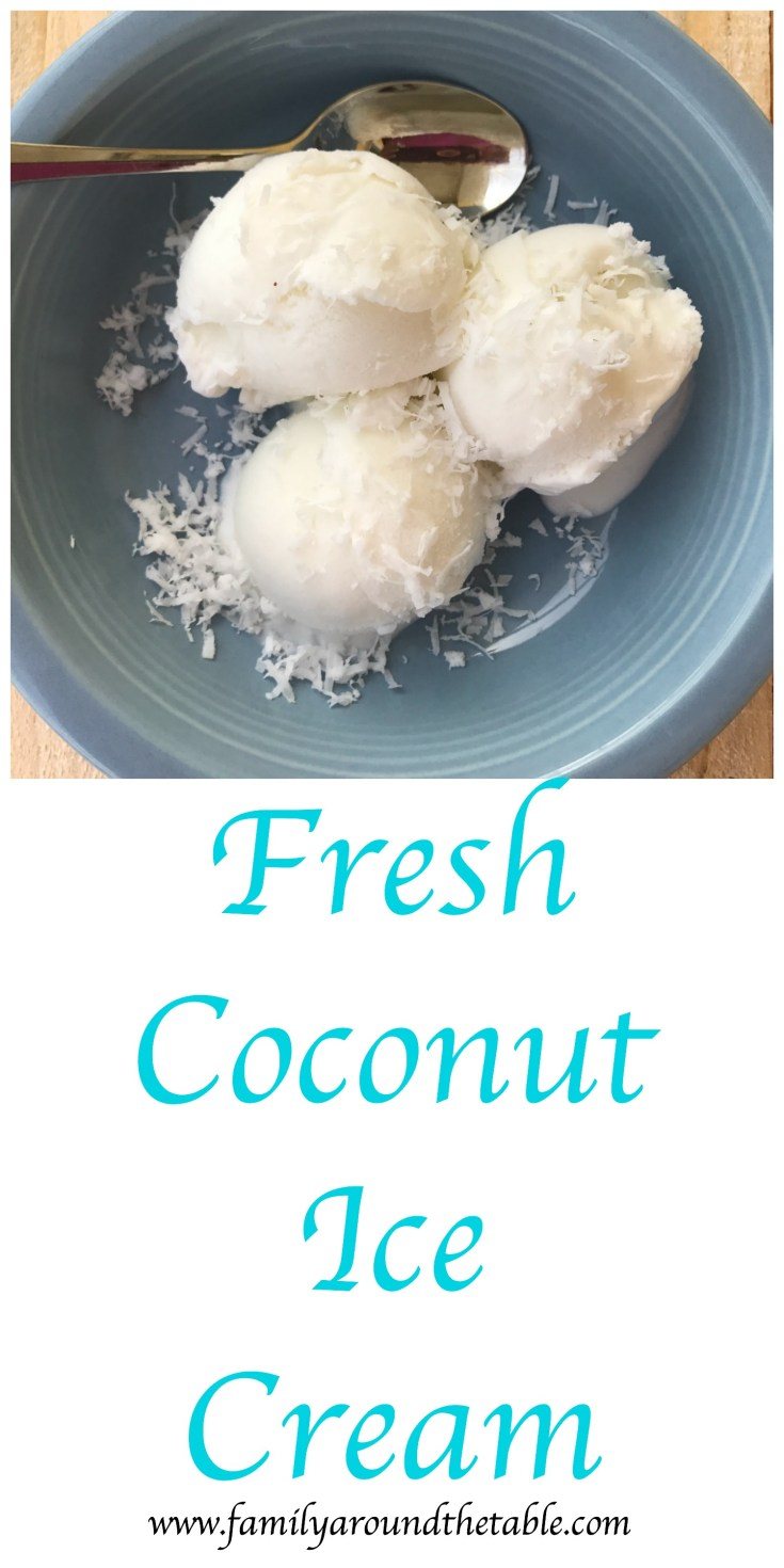 Fresh coconut ice cream with freshly grated coconut.
