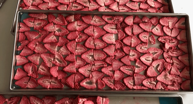 freeze dried strawberries in the metal tray