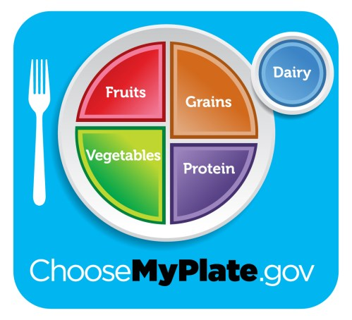 small resolution of Choose MyPlate Lessons