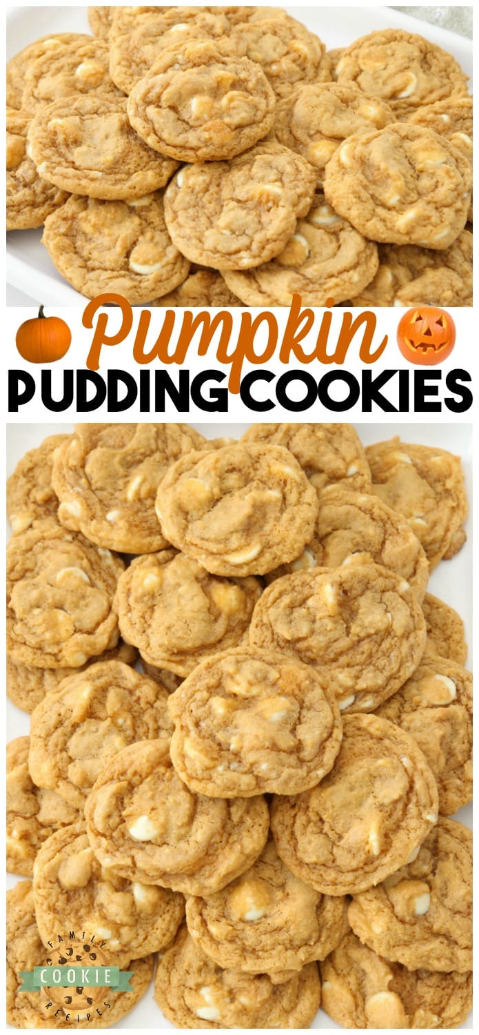 Pumpkin Pudding Cookies are soft, sweet & pumpkin spiced with pudding mix for the best flavor & texture. Easy pumpkin cookies that everyone enjoys! #pumpkin #pudding #cookies #pumpkinspice #Fall #baking #dessert #cookie #recipe Recipe from FAMILY COOKIE RECIPES