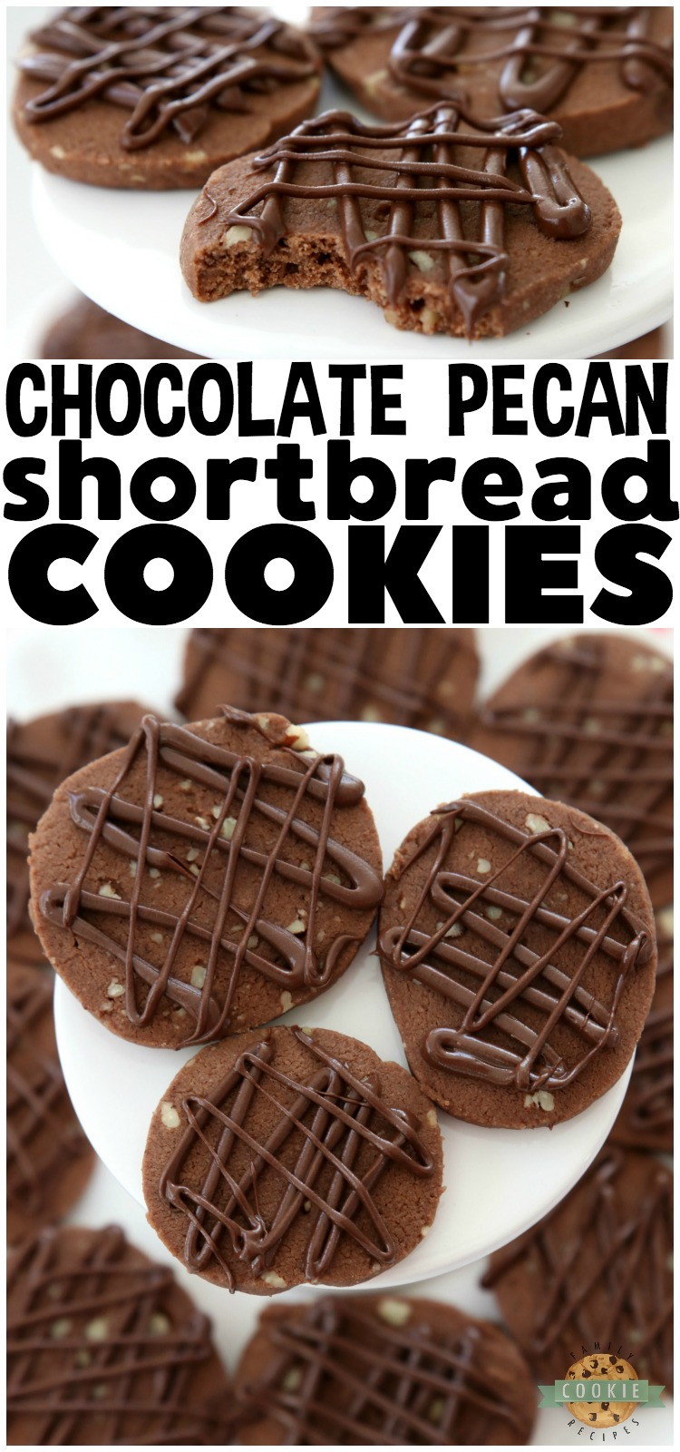 Chocolate Pecan Shortbread Cookies made by adding chopped pecans to our buttery chocolate shortbread then drizzling them with melted chocolate. These incredible shortbread cookies melt in your mouth and have the best chocolate flavor! #COOKIES #shortbread #butter #baking #chocolate #pecan #Christmas #cookie #recipe from FAMILY COOKIE RECIPES