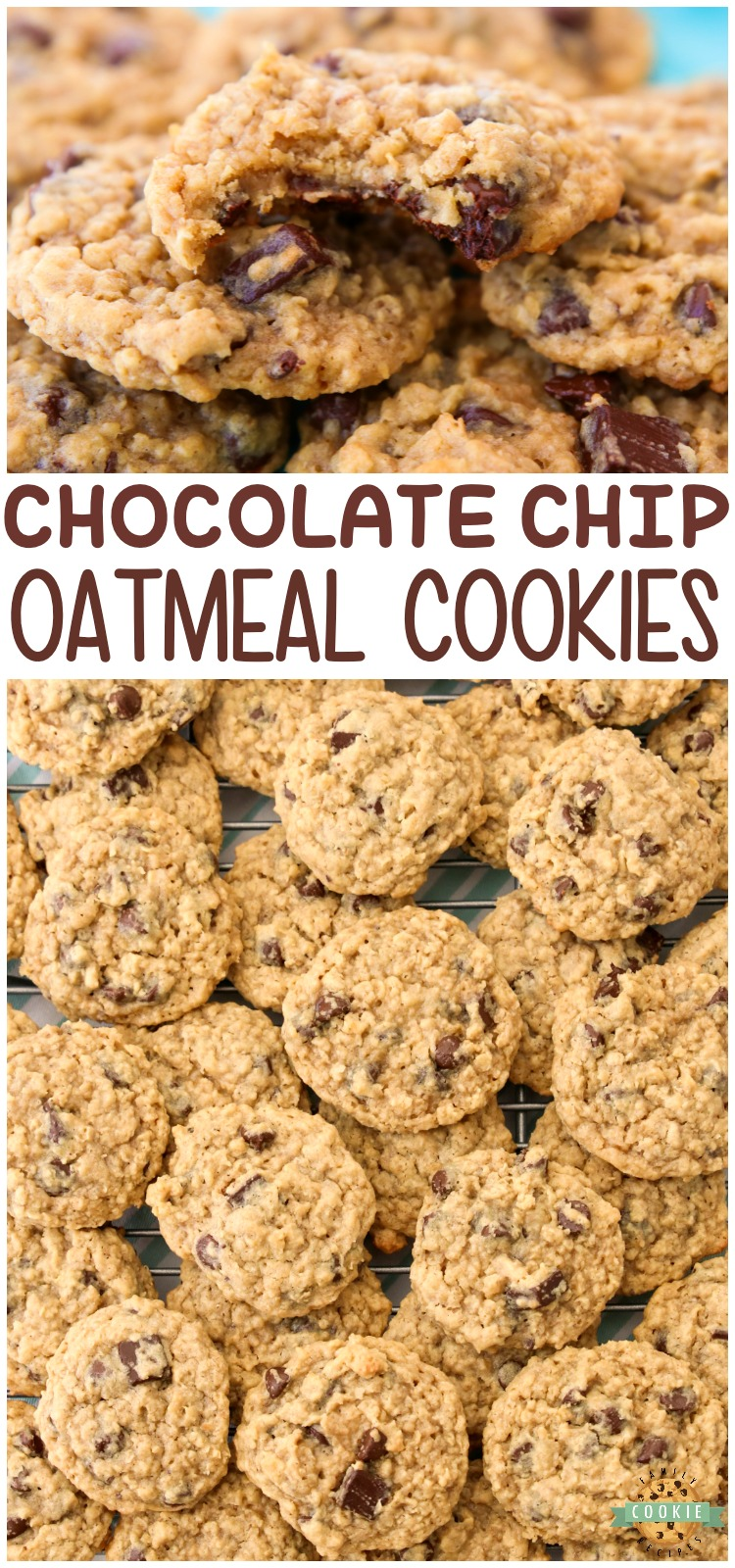 Chocolate Chip Oatmeal Cookies made with classic ingredients for the perfect soft & chewy oatmeal cookie! Amazing homemade cookie recipe you have to try! #cookies #oatmeal #chocolatechip #baking #dessert #recipe from FAMILY COOKIE RECIPES