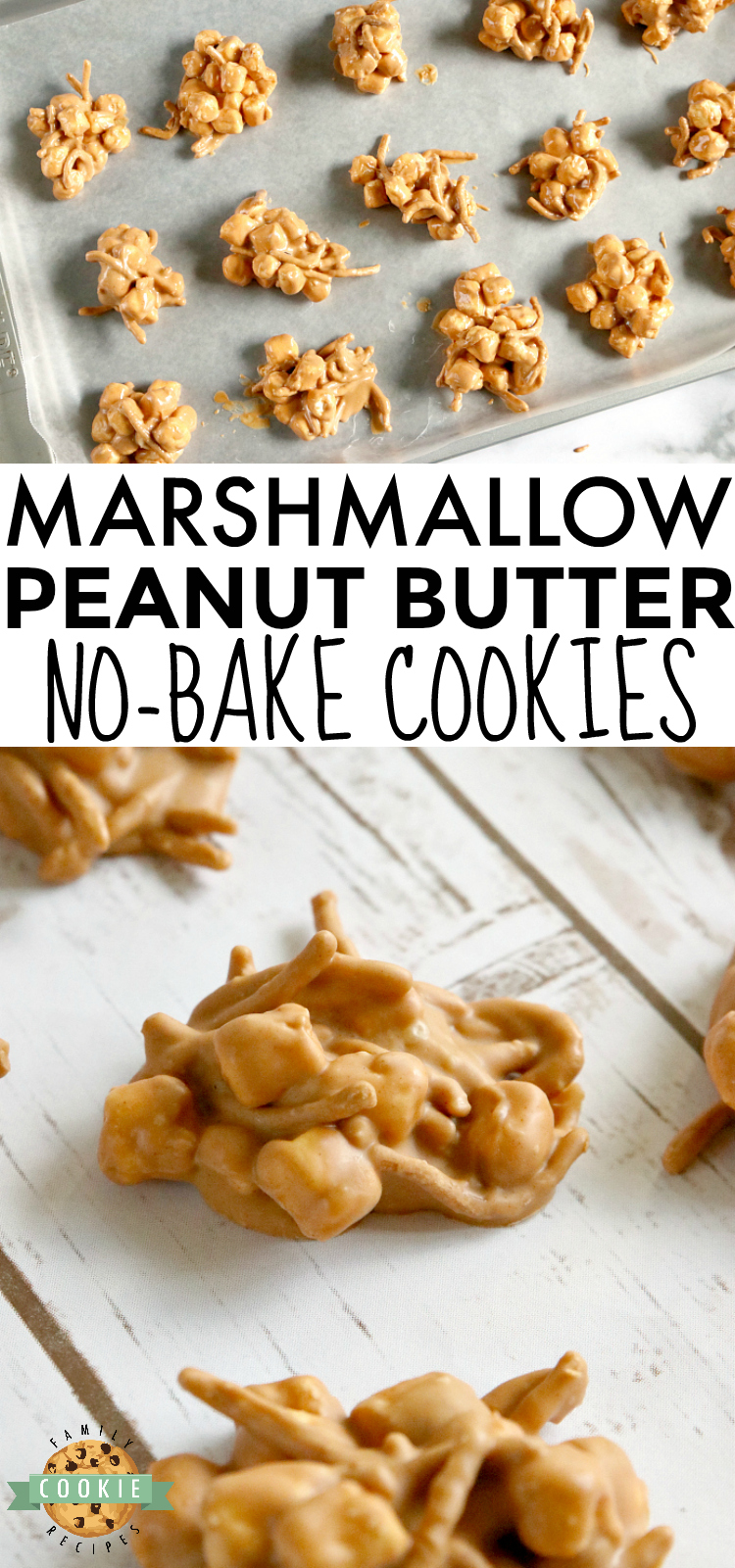 Marshmallow Peanut Butter No Bake Cookies are made with only 4 ingredients - marshmallows, peanut butter, butterscotch chips and chow mein noodles! via @familycookierecipes