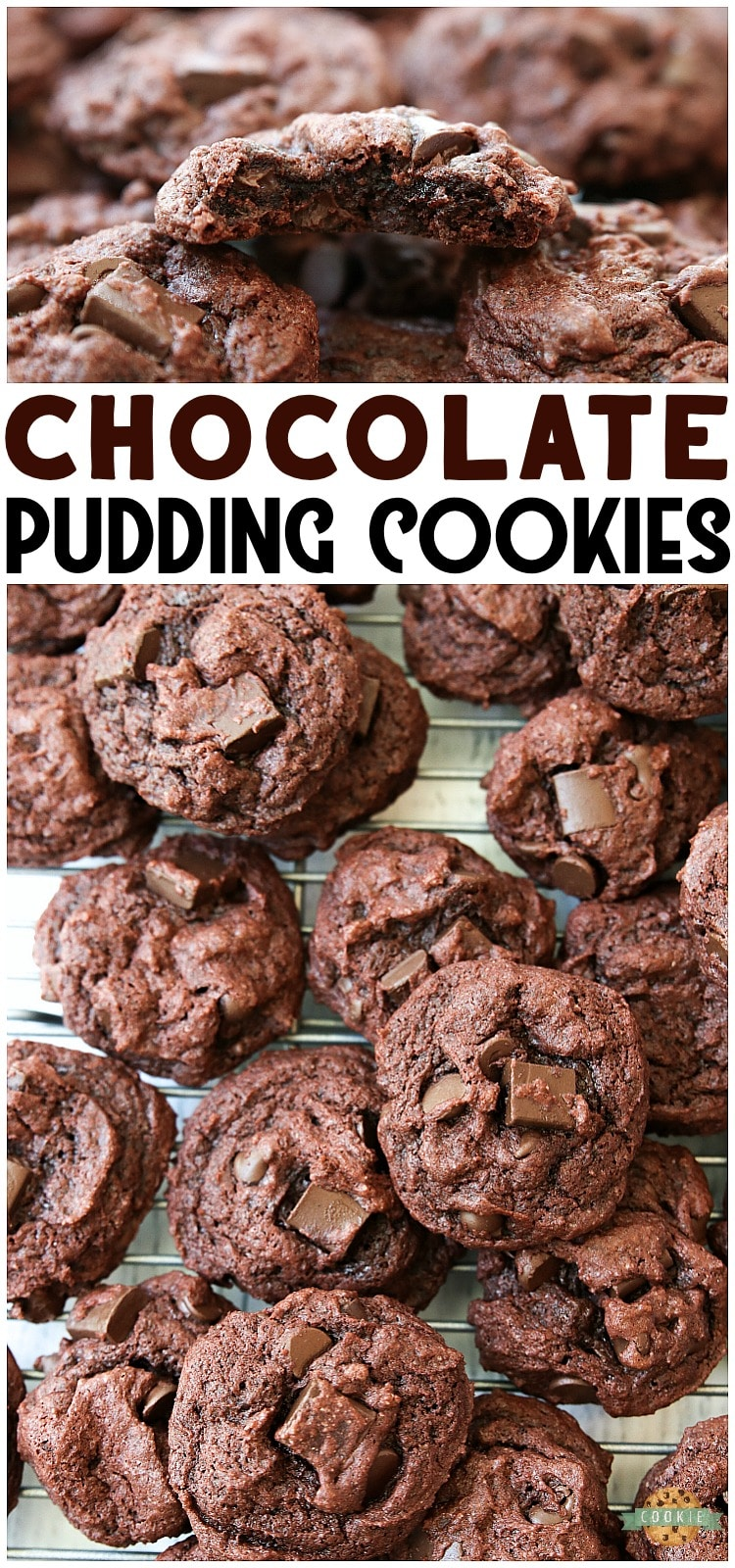 Double Chocolate Pudding Cookies made with chocolate pudding mix for soft, sweet cookies with incredible chocolate flavor! Best cookies for chocolate lovers for sure. via @familycookierecipes