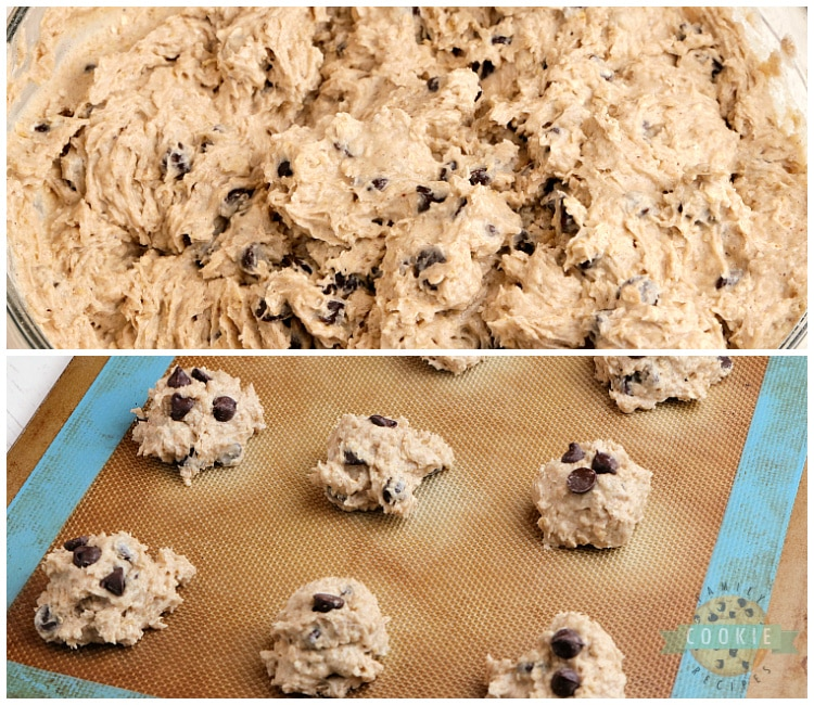Applesauce cookie dough with oatmeal and chocolate chips