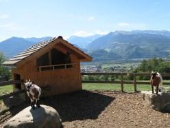 Heidi Land - Goat Farm in village