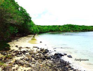 Pointe Borgnese - sud de la Martinique - Marin