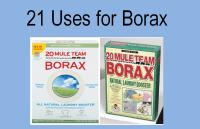 Borax On Carpet To Kill Scabies - Carpet Vidalondon