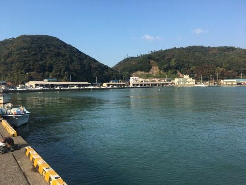 菅浜漁港の湾内の様子