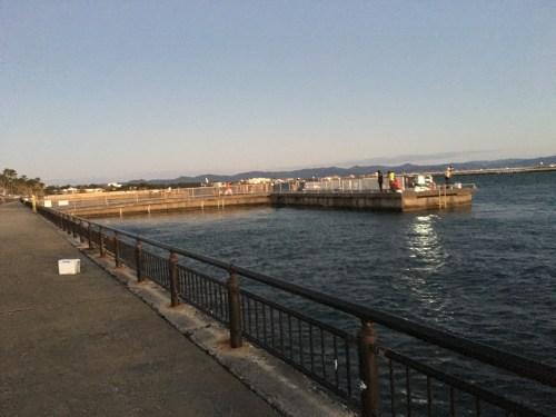 T字型堤防を岸から見る