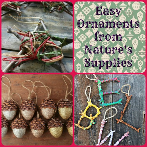 Easy DIY Ornaments From Natures Supplies Family Focus Blog
