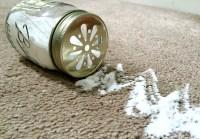 DIY Carpet Deodorizer - Family Focus Blog