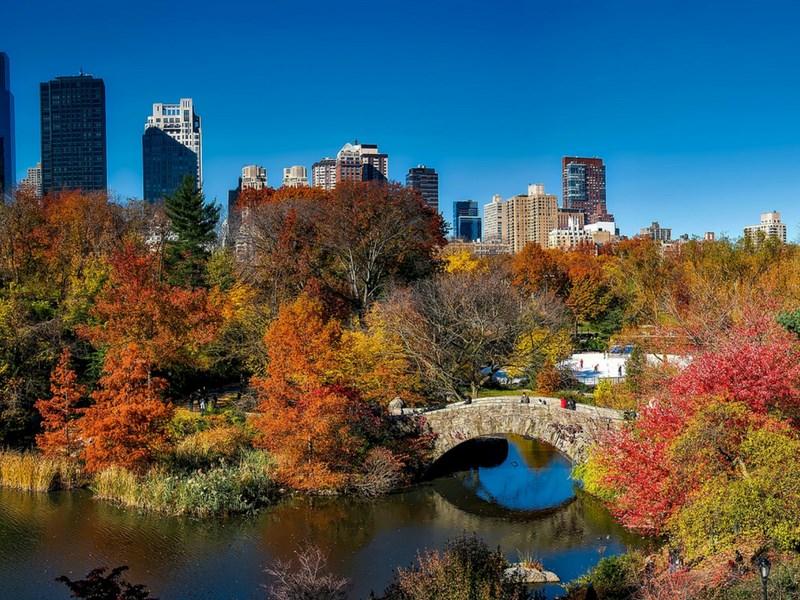 Central Park Attractions for families bridge