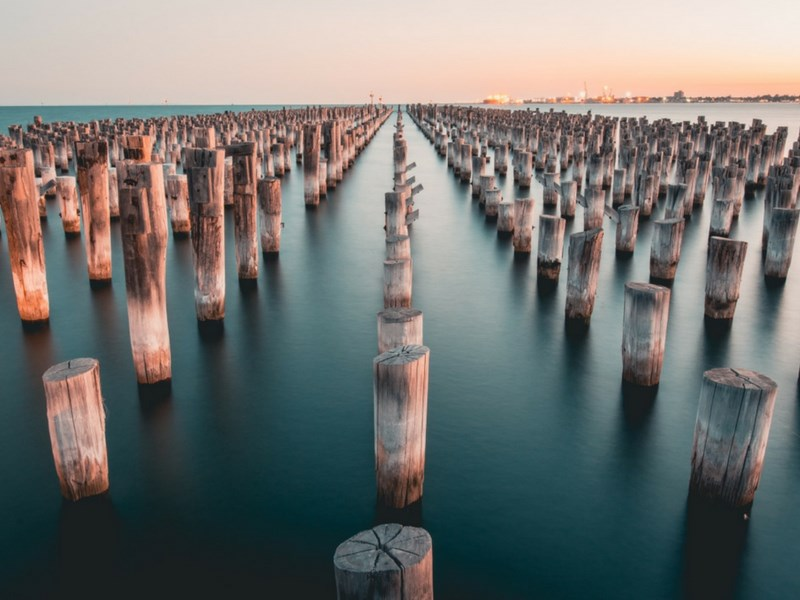 Things to do for Kids in Melbourne - Mooring Poles In Princes Pier
