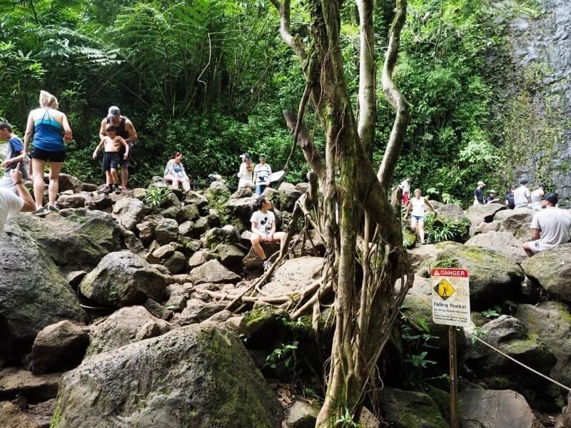 Manoa Falls girl rocks crowd