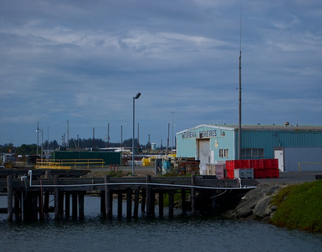 "On the way back, the now-typical ""industrial-chic"" beauty of the Marina, which includes a Fish Processing Plant ..."